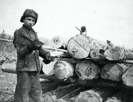 Child working in the forest